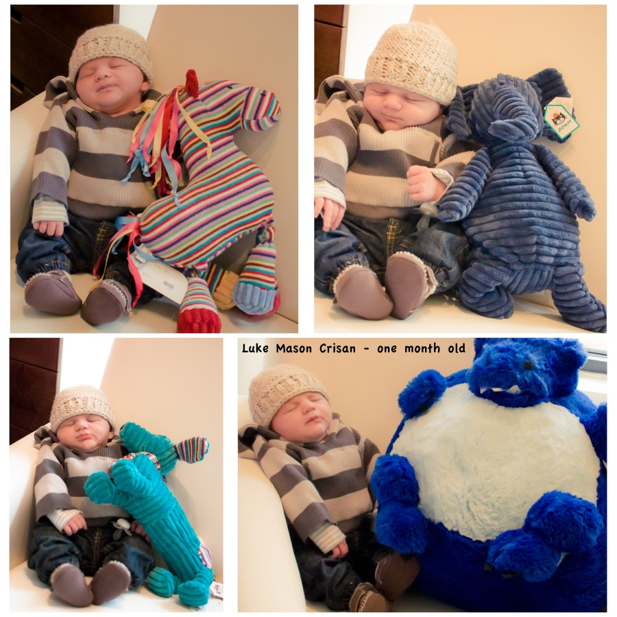 stuffed animal collection