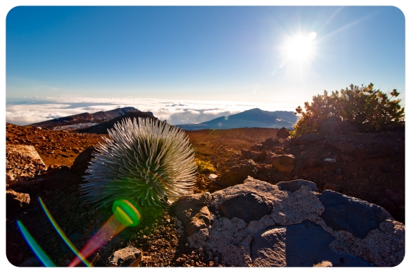 Haleakala Sunrise (47 of 57)