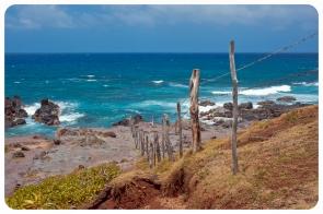North Maui Shore (13 of 19)