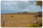 North Maui Shore (8 of 19)