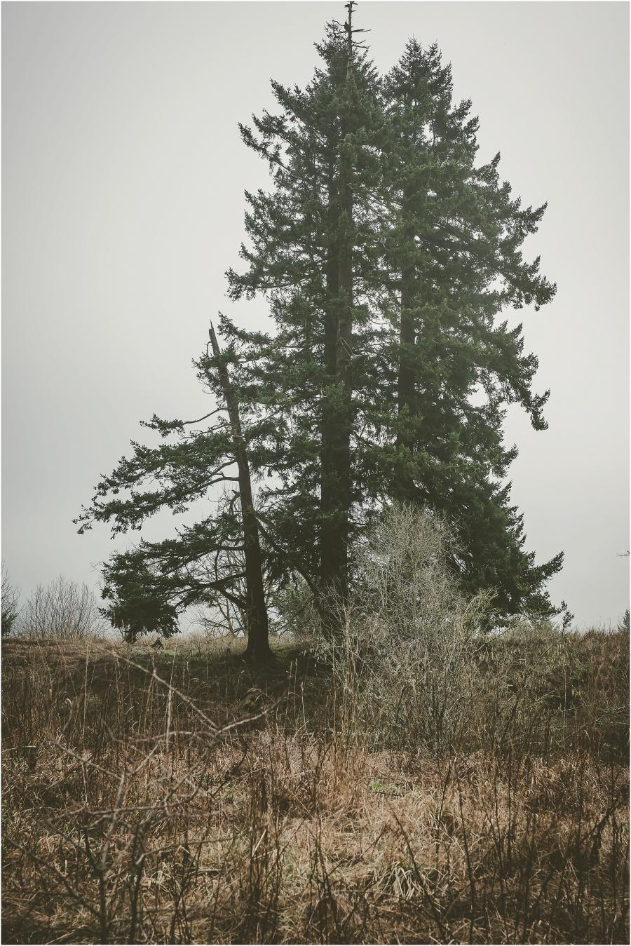2015-02-01_0029